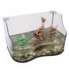 Lucky Reptile Turtle-Tarrium