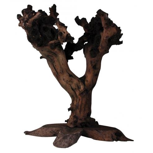 Lucky Reptile Grapevine Tree