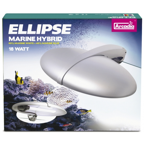 Arcadia Ellipse Light Lamp Marine HBD 24w
