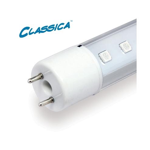Arcadia Marine White T5 LED