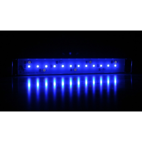 Arcadia Classica Stretch LED Marine