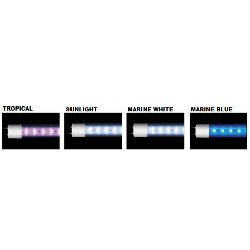 Arcadia Classica LED T8 Marine Blue