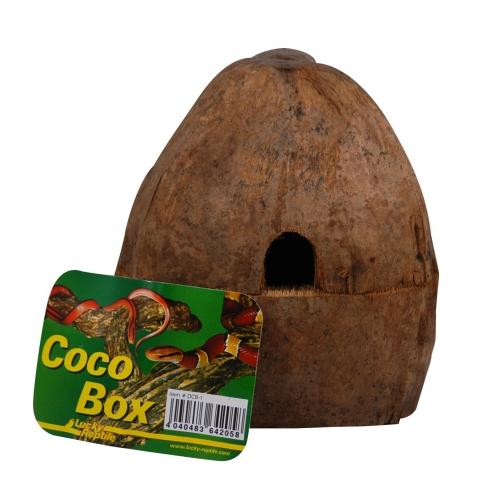 Lucky Reptile Coco Box