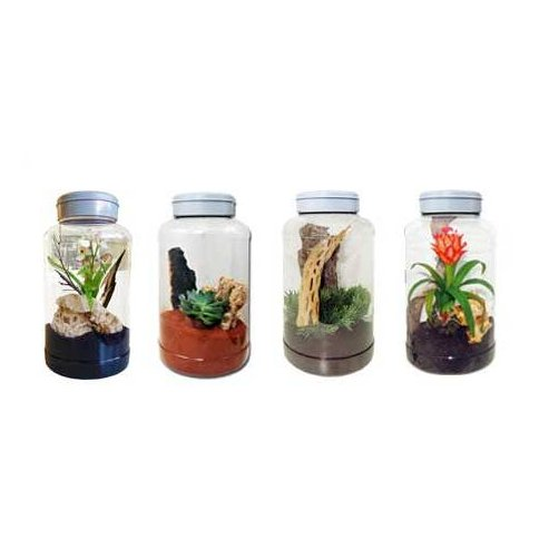 Lucky Reptile Insect Tarrium 5l