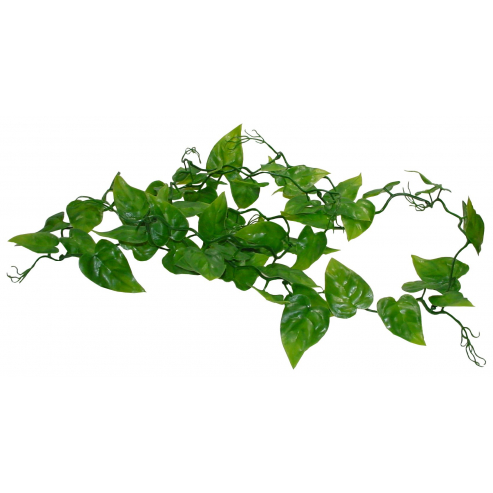 Lucky Reptile Jungle Vine